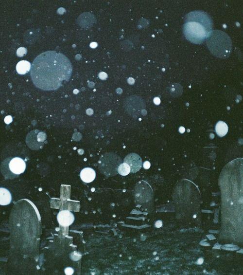 dark mocha orbs glowered - 500×565